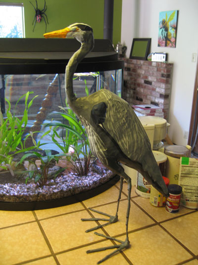 papier mache Great Blue Heron