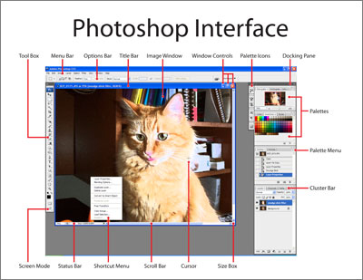 Photoshop CS3 Interface
